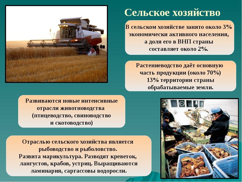 Тема 2. агропромышленный комплекс и его развитие в современных условиях