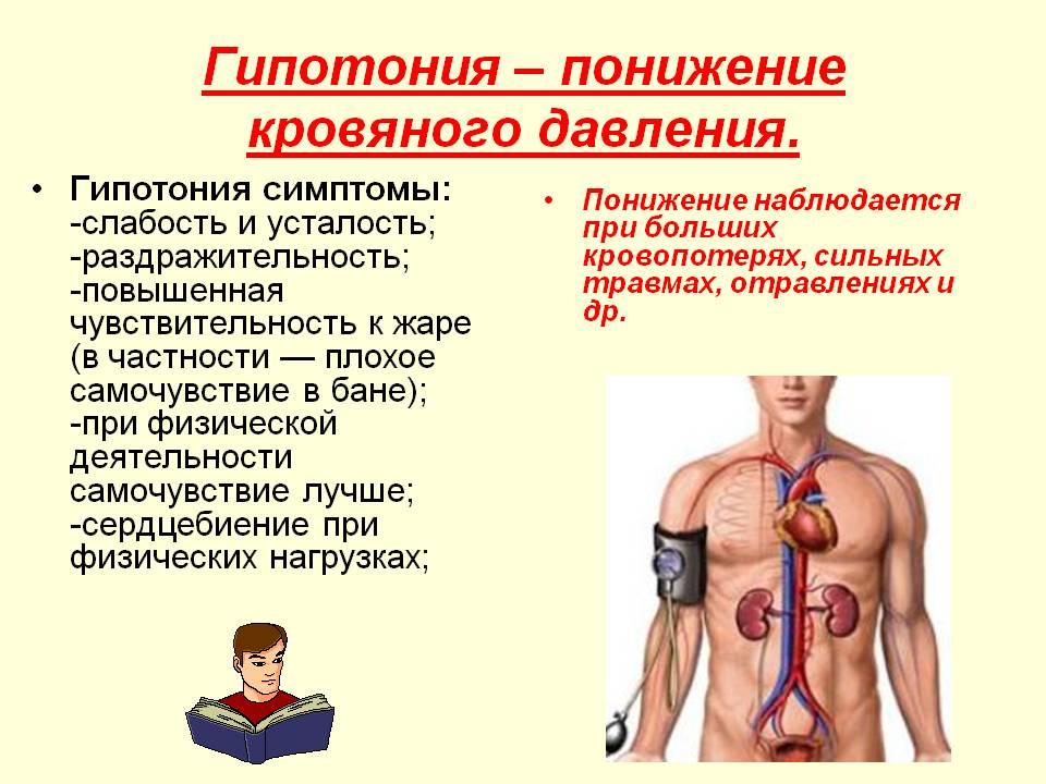 Причины гипотонии, симптомы и лечение   nmedik.org