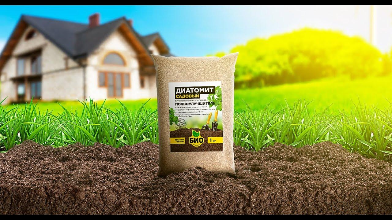 Лучшие способы использования кизельгура или природной диатомовой земли