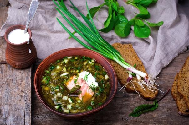 Ботвинья – классический рецепт приготовления холодного супа