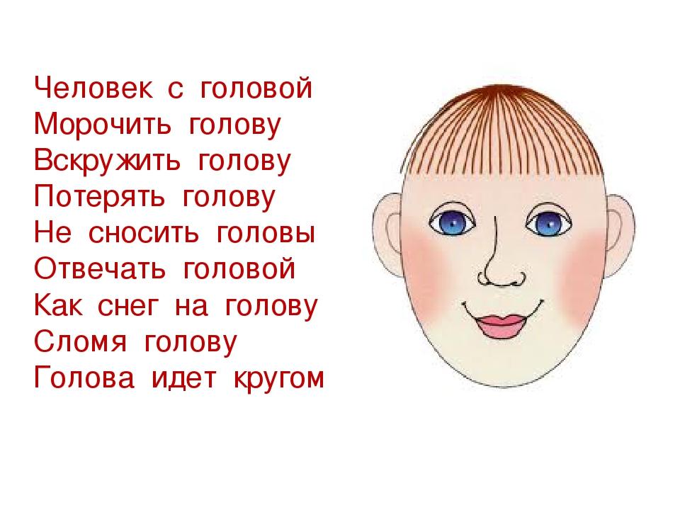 Что такое голова