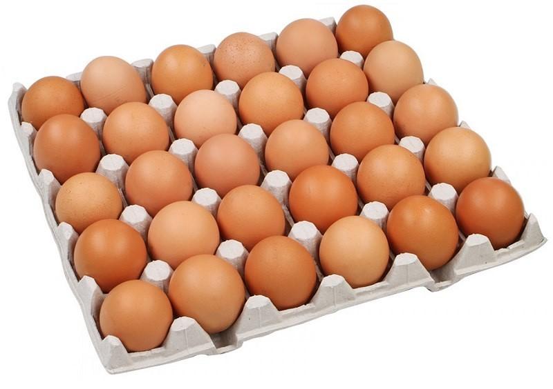 Яйцо (пищевой продукт) — википедия. что такое яйцо (пищевой продукт)