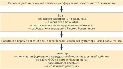 Как работодателю получить электронный больничный лист: правила принятия документа о нетрудоспособности с пошаговой инструкцией