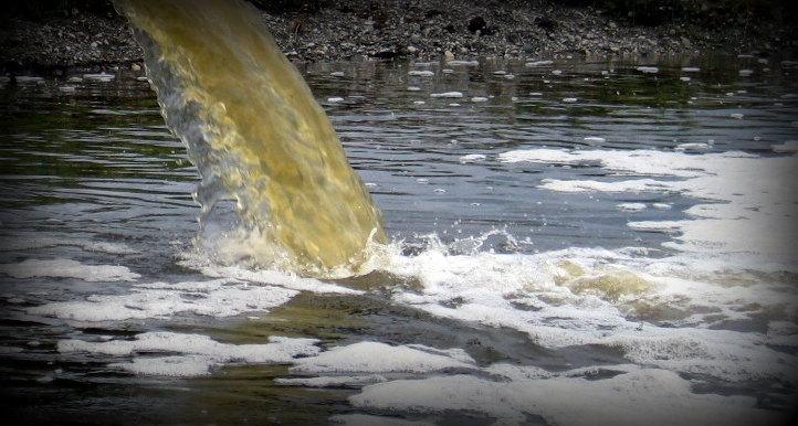 Сточные воды: виды, характеристики, методы очистки