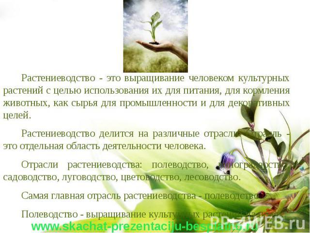 Сельское хозяйство: растениеводство. конспект по географии - учительpro