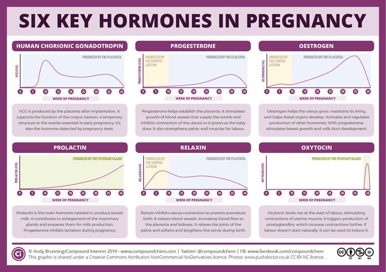 Что это такое - окситоцин? инструкция по применению, цена, отзывы. использование для прерывания беременности - medside.ru