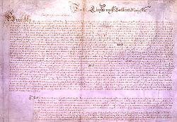 Петиция - это что такое? закон о петициях простыми словами