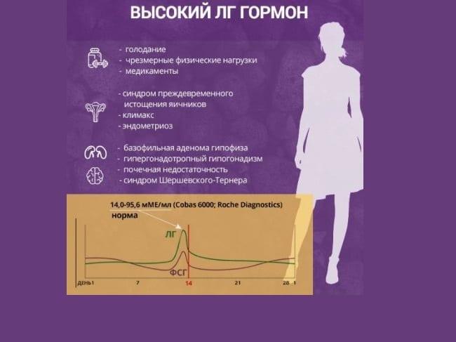 Половые гормоны лг и фсг