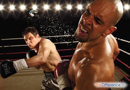 Нокаут в боксе – главные особенности и правила