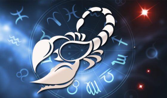 Знак скорпион, ребенок и взрослый