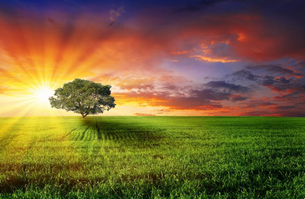 Восход и закат солнца: описание, где восходит и заходит солнце