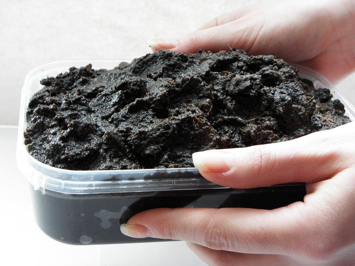 Сапропель – что это такое и как правильно использовать это удобрение | дела огородные (огород.ru)