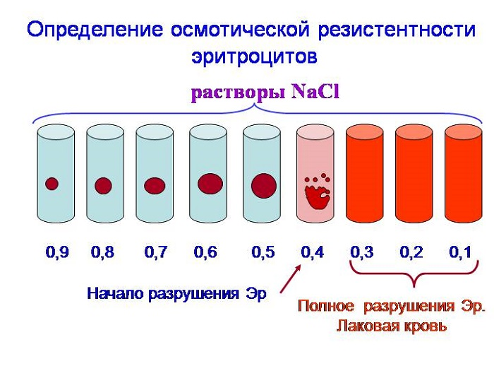 Гемолиз крови при сдаче анализов что это такое