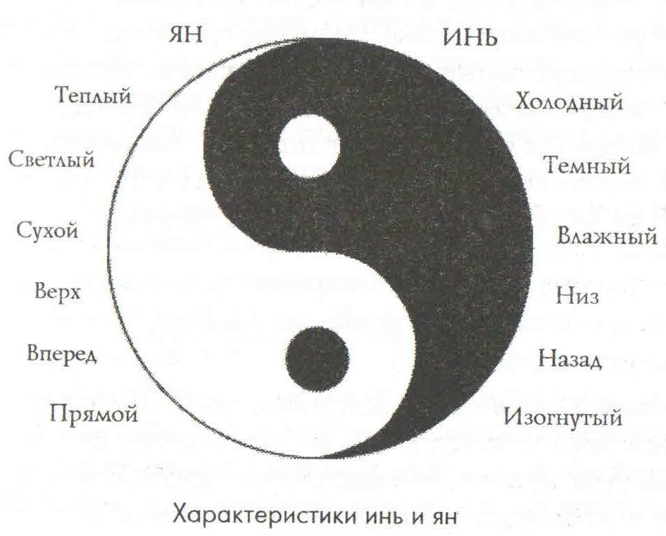 Инь и ян