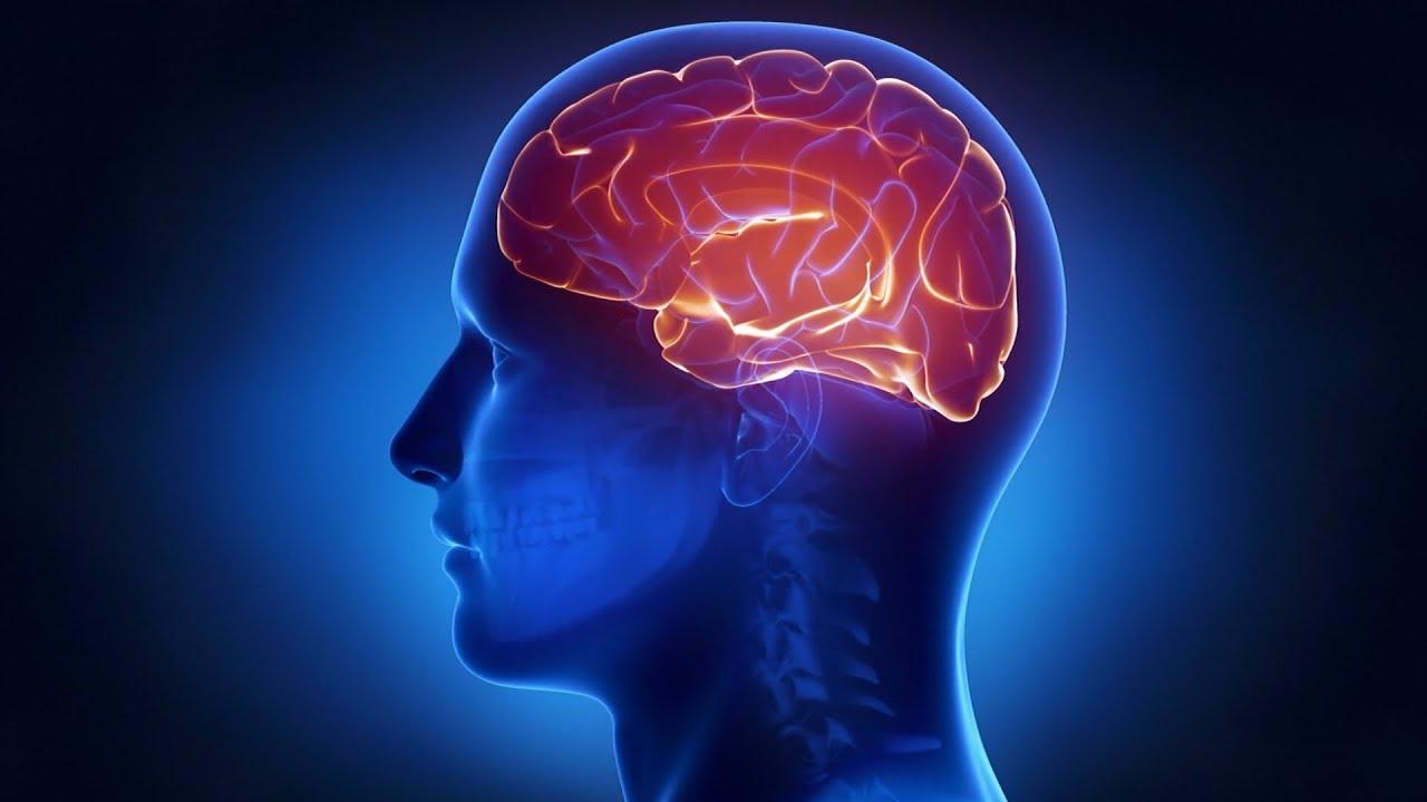 Дисциркуляторная энцефалопатия головного мозга: симптомы и лечение