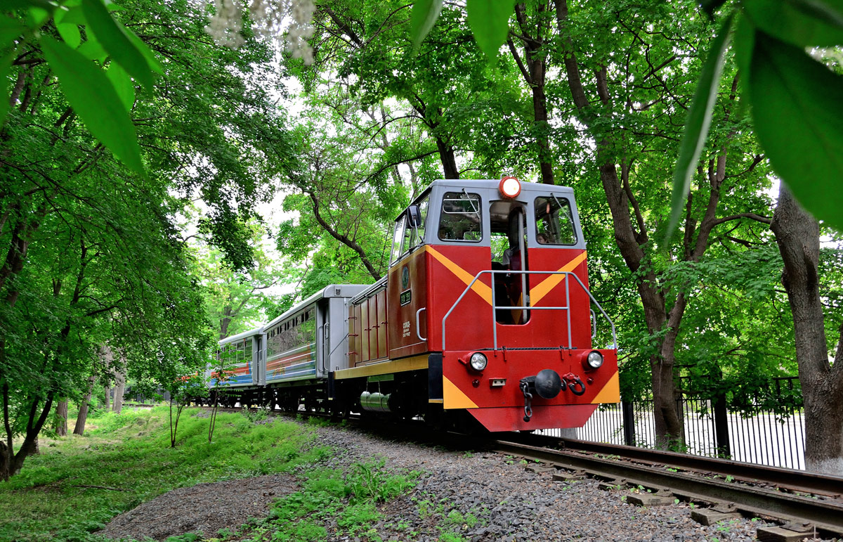 Детская железная дорога в санкт-петербурге (малая октябрьская железная дорога)