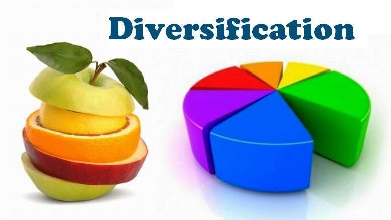 Диверсификация — это... что такое диверсификация: приемы и формы