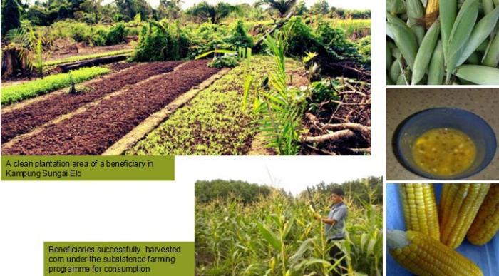 5.1 натуральное хозяйство и его признаки. товарное производство и его типы