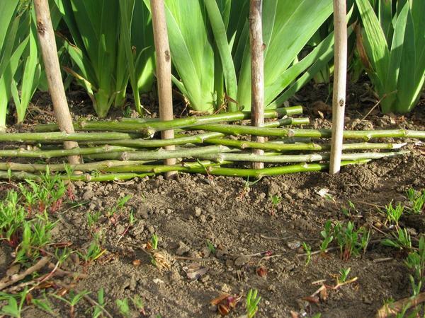 Плетеные ограждения: как сделать плетеный забор из веток