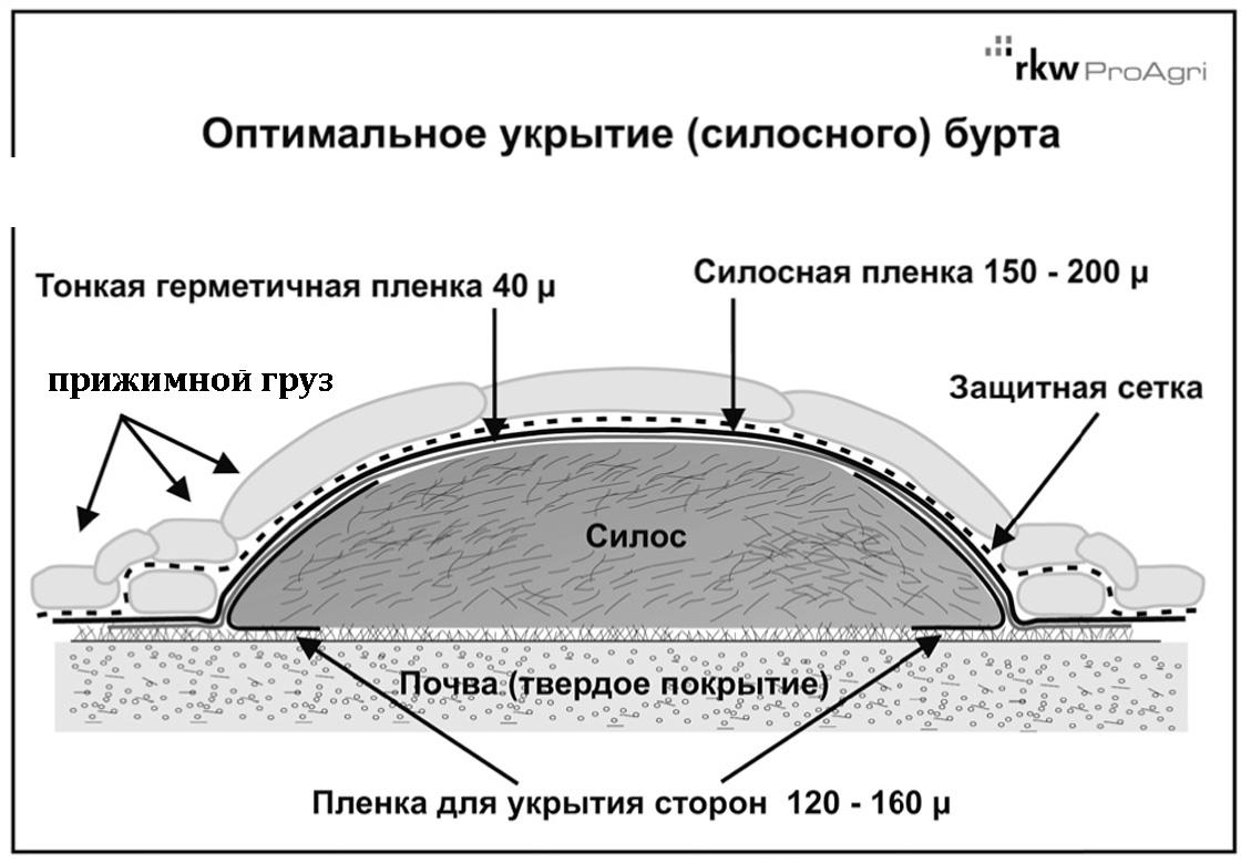 Силос: что это такое, фото, заготовка, как делают, хранение в яме