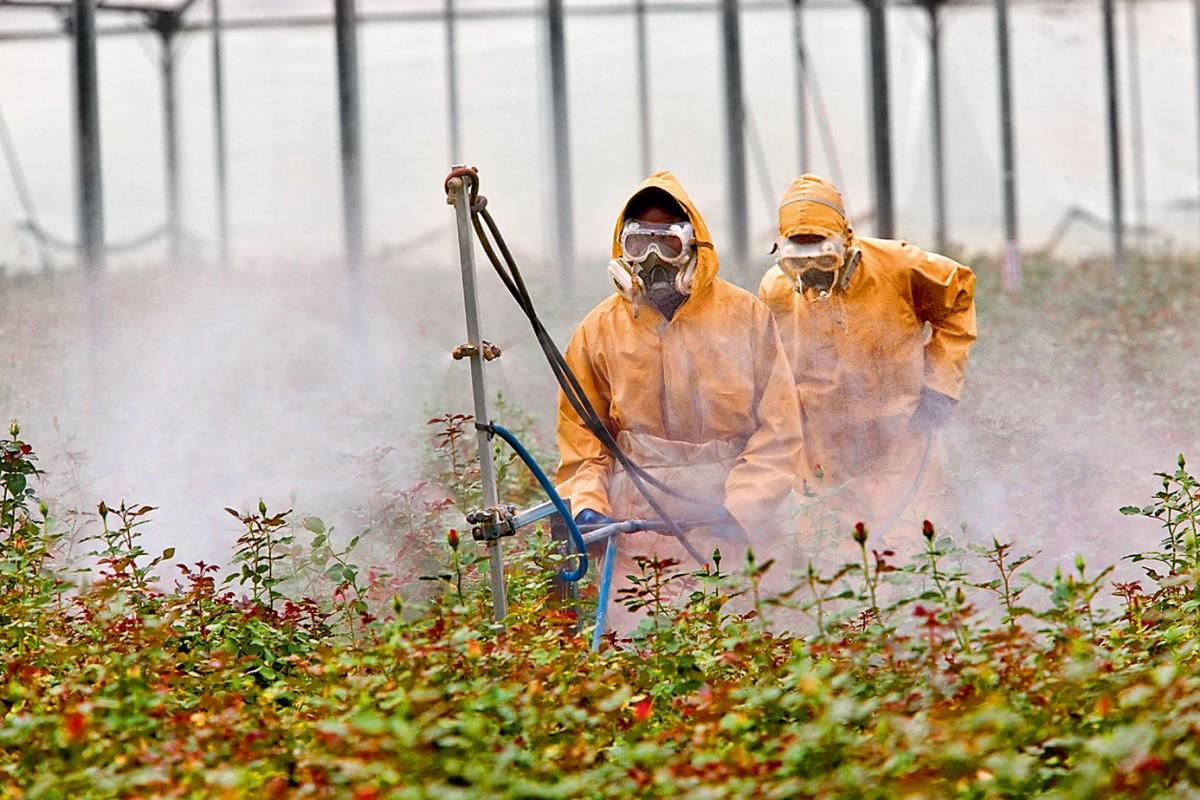 Пестициды — википедия с видео // wiki 2