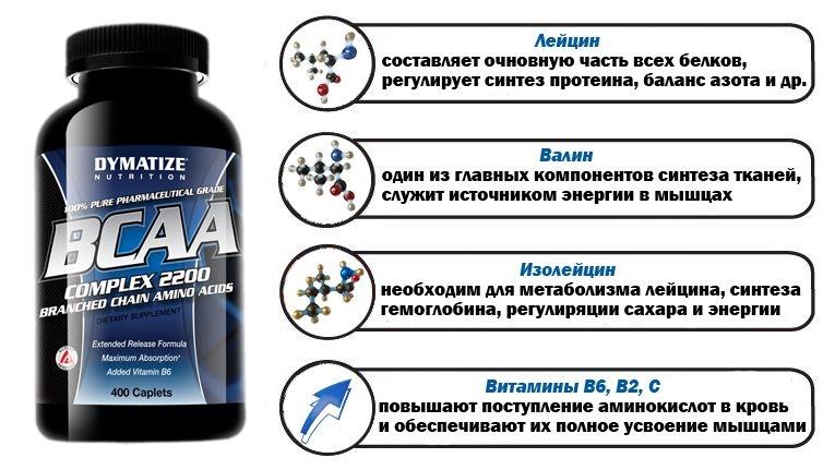 Аминокислоты в организме и продуктах питания: источники, польза | food and health