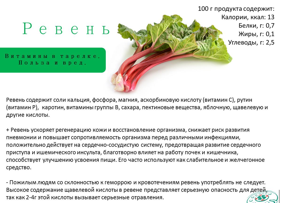 Ревень. полезные свойства и применение. выращивание из семян