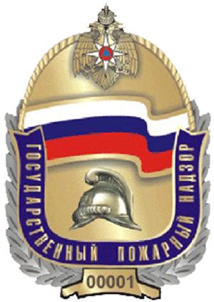 Государственный надзор