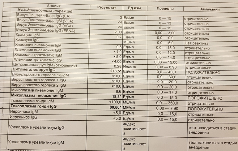 Анализ ифа - что это такое: иммуноферментный анализ крови