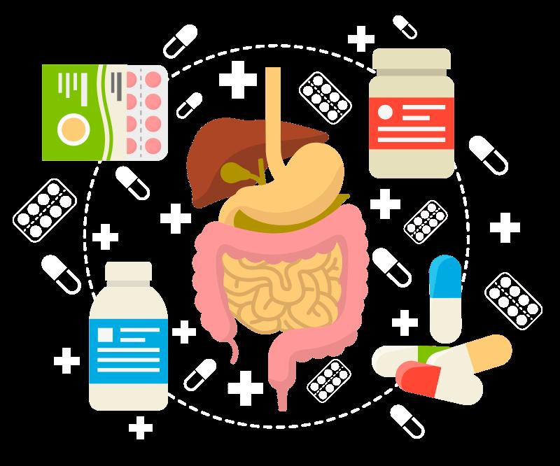 Энзимы что это такое и как приготовить - все о здоровье