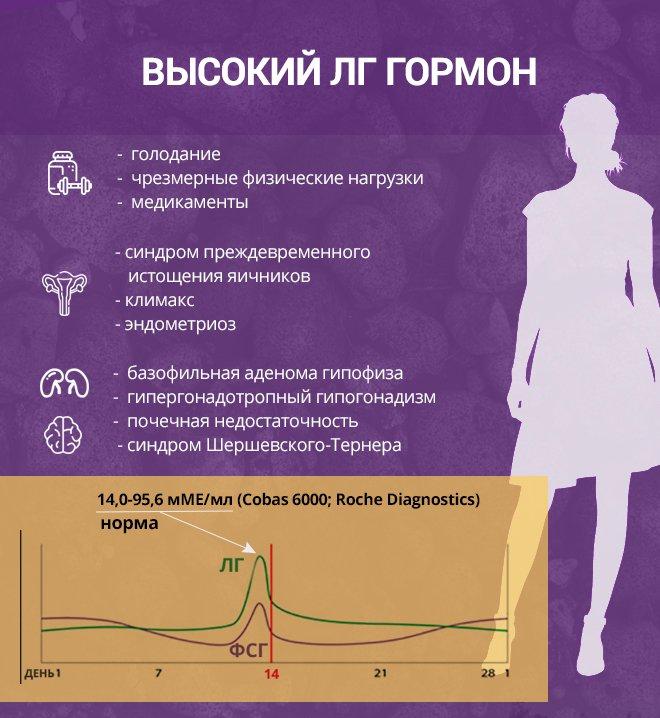 Лютеинизирующий гормон в анализе крови: нормы, симптомы отклонений от нормы