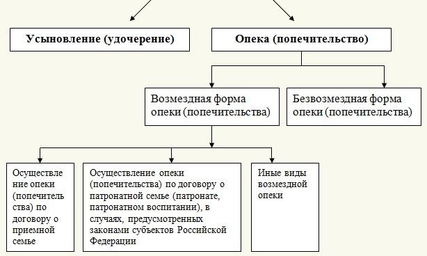 Что такое попечительство в россии, чем оно отличается от опеки?