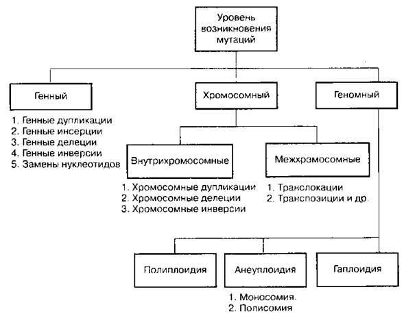 Модификационная изменчивость, примеры и свойства фенотипической изменчивости, анализ, статистические закономерности, групповой характер, медицинское значение   tvercult.ru