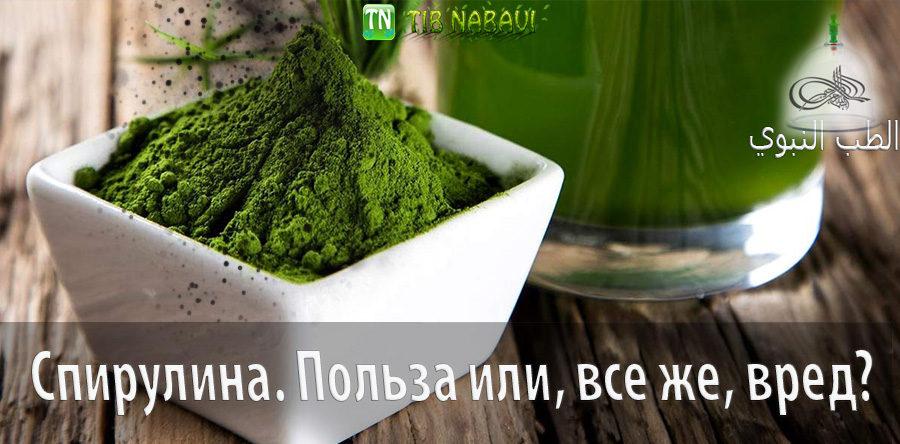 Спирулина: полезные свойства ипротивопоказания, применение водоросли для лица иволос, внародной медицине, для похудения + отзывы
