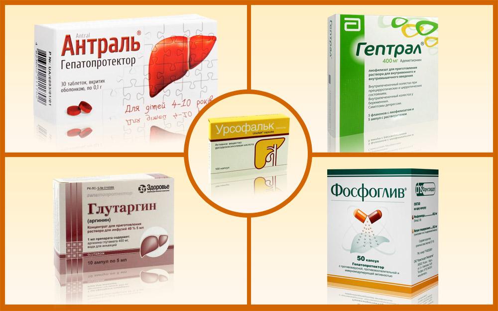 Список препаратов гепатопротекторов с доказанной эффективностью: что это такое и какие медикаменты выбрать для лечения печени растительного происхождения