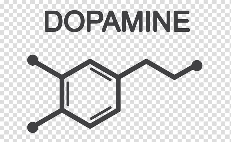 Дофамин — википедия с видео // wiki 2