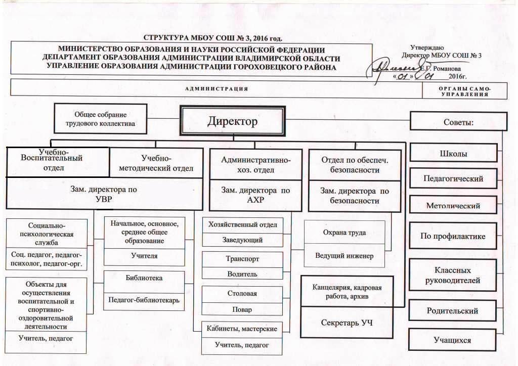 Какие бывают структурные подразделения организации