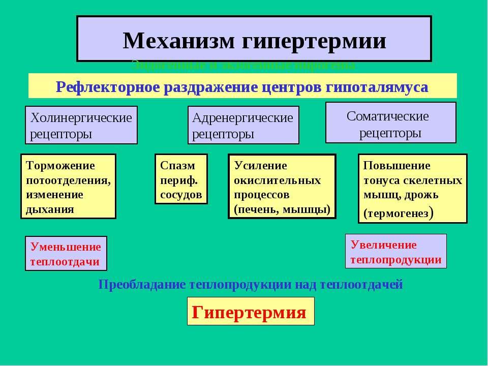 Гипертермия: виды, симптомы, экстренная помощь