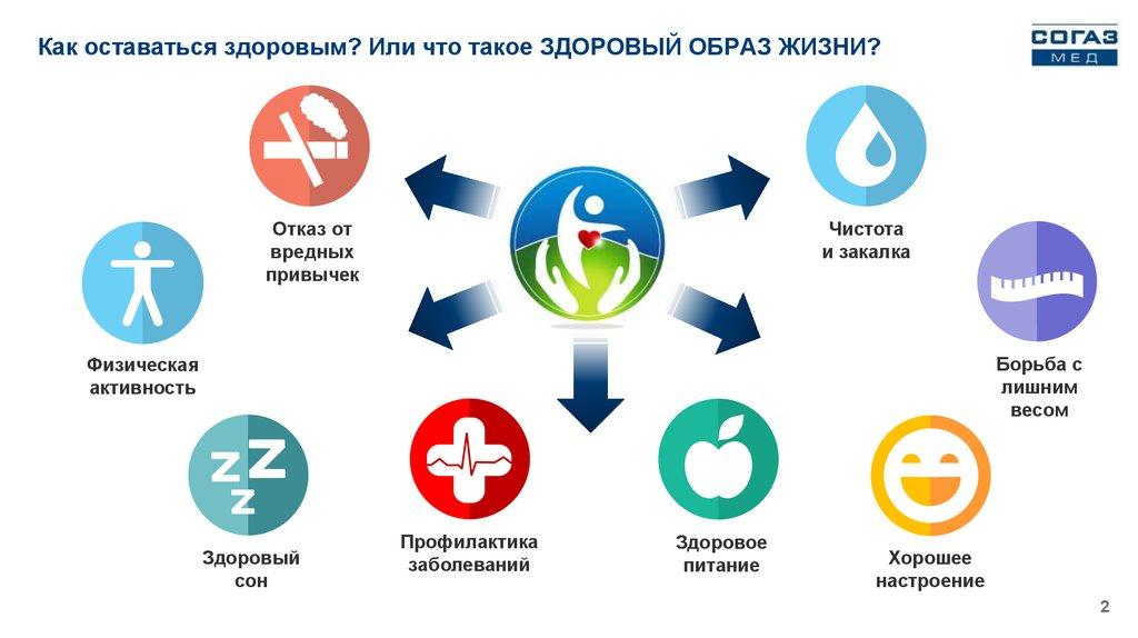 Что такое зож, определение блога ozog.ru   озож