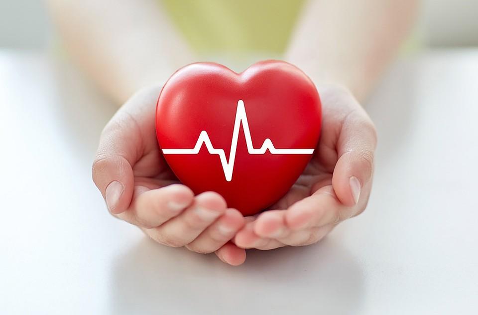 Расположение сердца в грудной клетке фото - в домашних условиях, вылечить, диагноз, лекарственные препараты