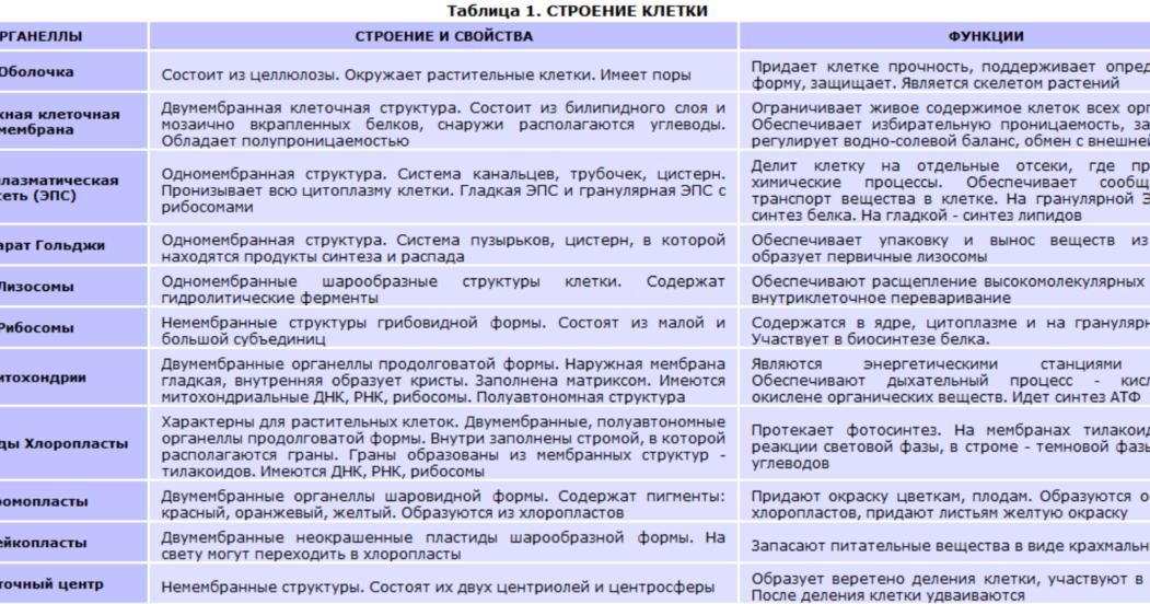 Органоиды клетки, отличия строения растительной клетки от животной в таблице, их функции | tvercult.ru