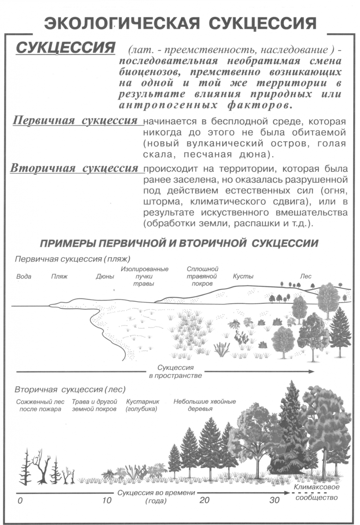 Экологическая преемственность - ecological succession