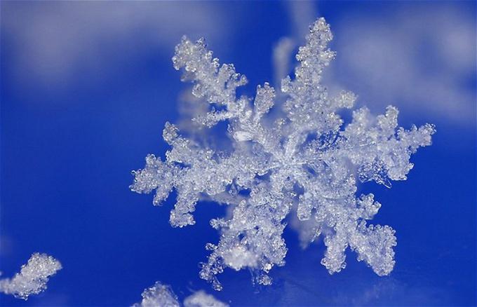 Снег — википедия