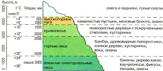 Высотная зональность