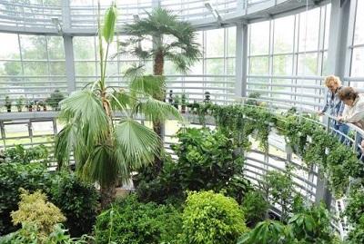 Стили и конструкции зимних садов, фотографии и разновидности оранжерей