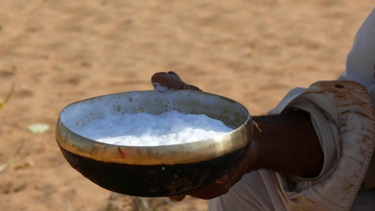 Топленое молоко: польза и вред для здоровья человека
