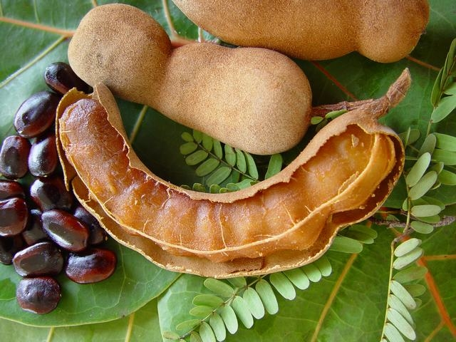 Тамаринд фрукт