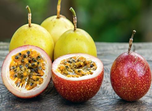 Маракуйя — полезные свойства и противопоказания, калорийность, состав. как есть маракуйю, рецепты. выращивание маракуйи в домашних условиях