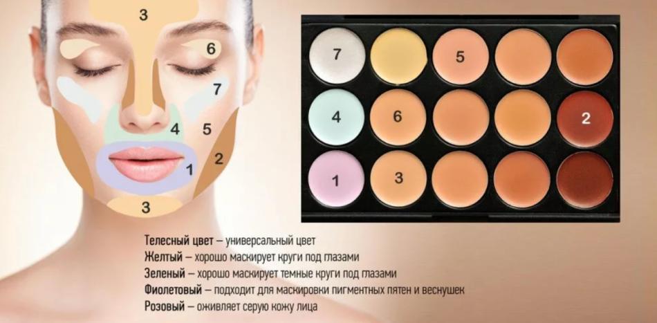 Палетка консилеров для лица: какой цвет корректора для чего и как пользоваться