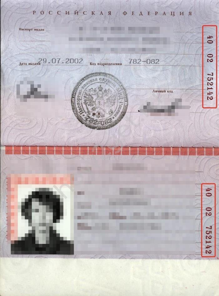 Где пишется серия и номер паспорта - защита прав